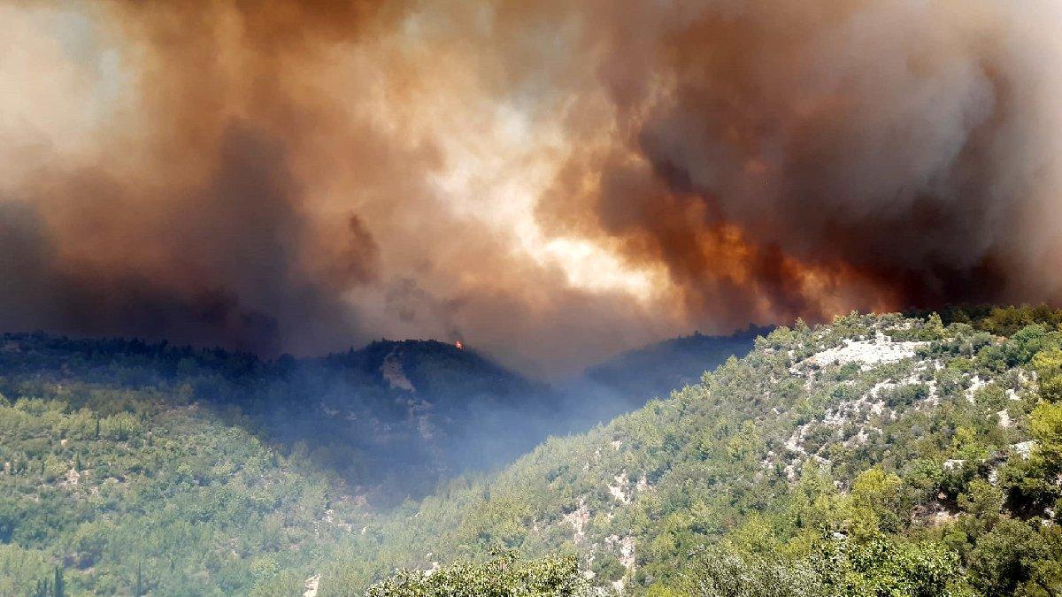 Orman Yangınları, doğal olmayan en büyük felakettir…